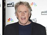 Gary Busey hits pedestrian with his car in a Malibu grocery store parking lot