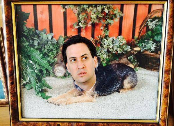 Man puts Ed Miliband's face on family photos to see if his mum would notice