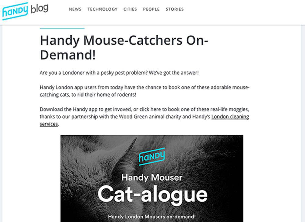 Mouse catcher app lets you foster a cat for free