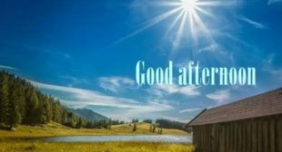 Good Afternoon SMS, Good Afternoon Messages, Good Afternoon Wishes