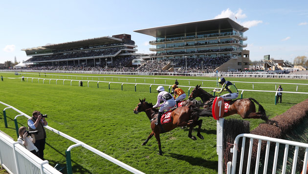 Cheltenham Race Abandoned After Horse 'Dame Rose' Dies On Hottest Day Of The Year