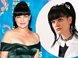 Pauley Perrette approached CBS with 'workplace concern'
