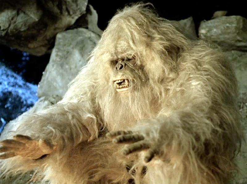 No, the Abominable Snowman isn't a rare polar bear