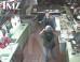 Jamie Lynn Spears Waves Knife After Sandwich Restaurant Brawl, In New CCTV Footage (VIDEO)