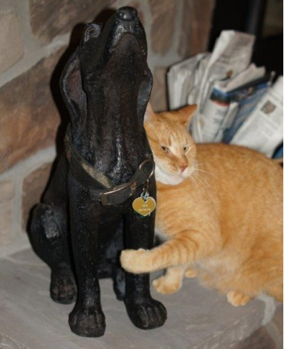 Cat cuddles up to the statue of her dead friend