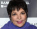 Liza Minnelli 'Making Excellent Progress' After Checking Into Rehab To Treat Addictions