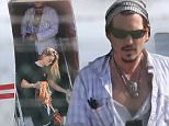 Johnny Depp and Amber Heard in LA after reports actor could face jail time