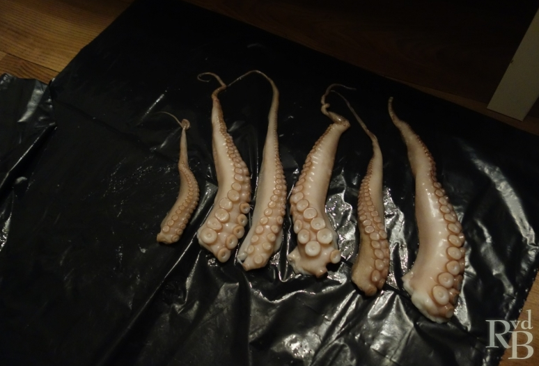 Man claims to have found some 'alien tentacles' (which looks suspiciously octopus-like)