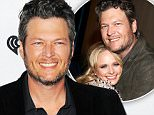 Miranda Lambert and Blake Shelton's friends say it was HIM who wanted to divorce