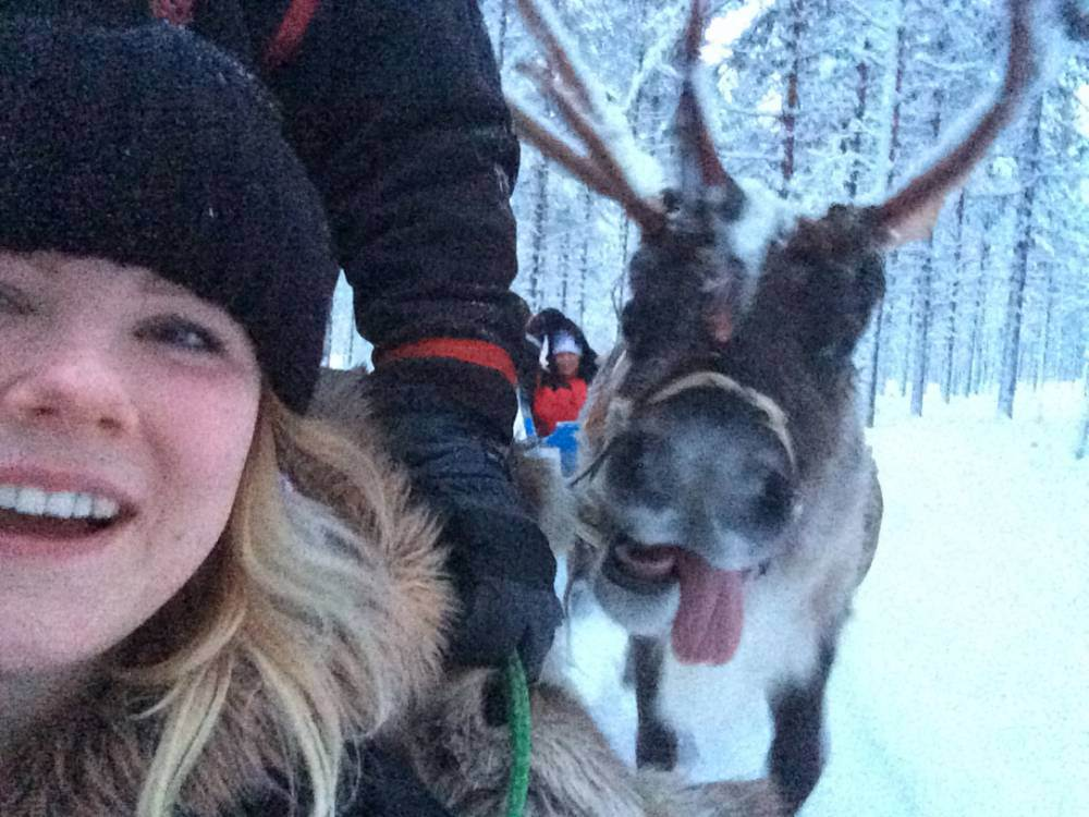 This reindeer photobomb might be the most Christmassy thing we have ever seen