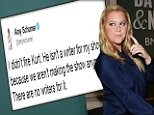 Amy Schumer reveals on Twitter 'we aren't making the show anymore'