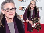Judge nixes Carrie Fisher's request to be taken off wrongful death suit in woman's 2011 overdose