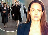 Angelina Jolie campaigns for children at International Criminal Court