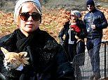 Jennifer Lawrence enjoys New Year's Eve stroll with boyfriend Darren Aronofsky