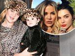 Khloe Kardashian is unrecognizable in flashback photo
