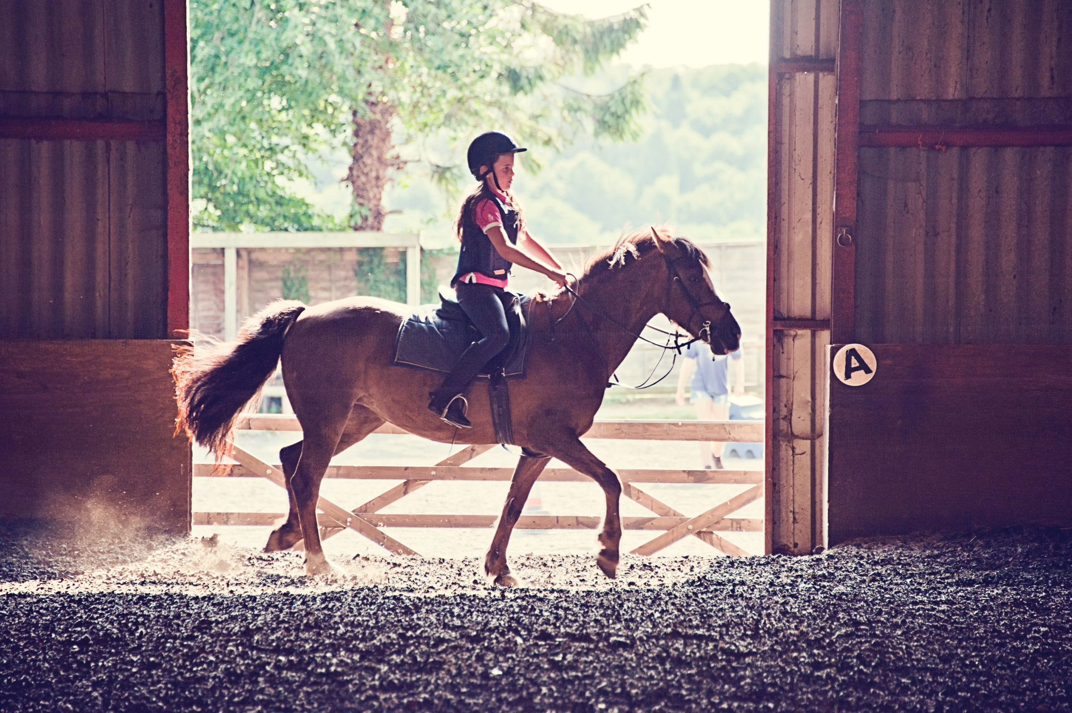 Foster Care, A Young Girl's Dreams And A Horse Called T-Bone