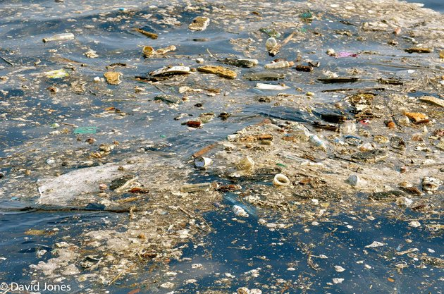 Scientists Discover Enzyme That Eats The Worst Polluting Plastics