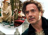 Robert Downey Jr. talks to the animals as famed character Dr. Dolittle in new trailer