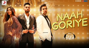 Naah Goriye Lyrics – Bala  | Find Any Lyrics You Want Of Hindi, Punjabi, English