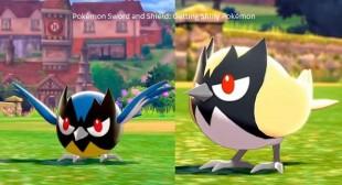 Pokémon Sword and Shield: Getting Shiny Pokémon
