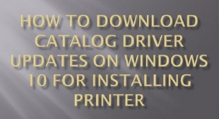 How to Download Catalog Driver Updates on Windows 10 For Installing Printer