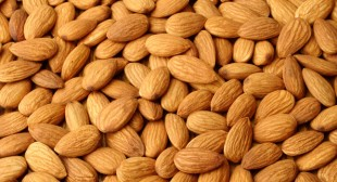 High Quality Almonds nuts buy online