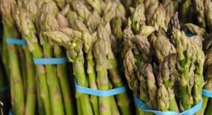 Fresh Organic Asparagus Suppliers in Mexico city