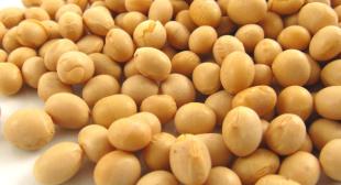 Buy Soya Beans Online UK For Sale