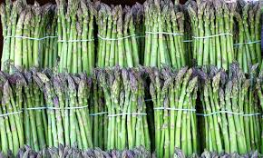 High quality organic asparagus Distributors in Mexico