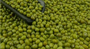 Preparation and Serving Tips of Green Mung Beans Purchased via Online in UK