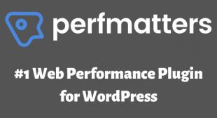Free Download Perfmatters Plugin (Nulled) – Performance Plugin For WordPress – FreeWpHub