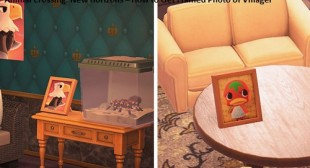 Animal Crossing: New Horizons – How to Get Framed Photo of Villager