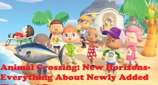 Animal Crossing: New Horizons- Everything About Newly Added Fish and Bugs