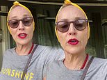 Sharon Stone, 62, gives sound advice on how to create a 'safe room'