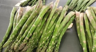 Place Order Online Asparagus suppliers In Mexico