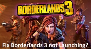 How to Fix Borderlands 3 not Launching?