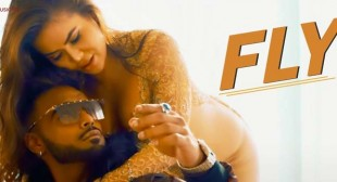 Fly Lyrics – Indeep Bakshi